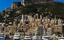Jardin Exotique | Monaco Real Estate